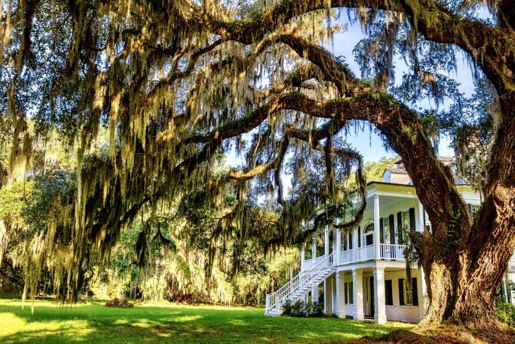 Grove Plantation house 5 8.1.2020