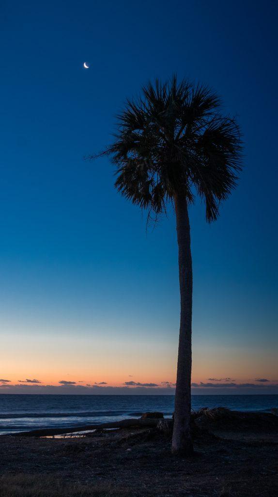 Sunrise 3 Hunting Island SP 1.19.20